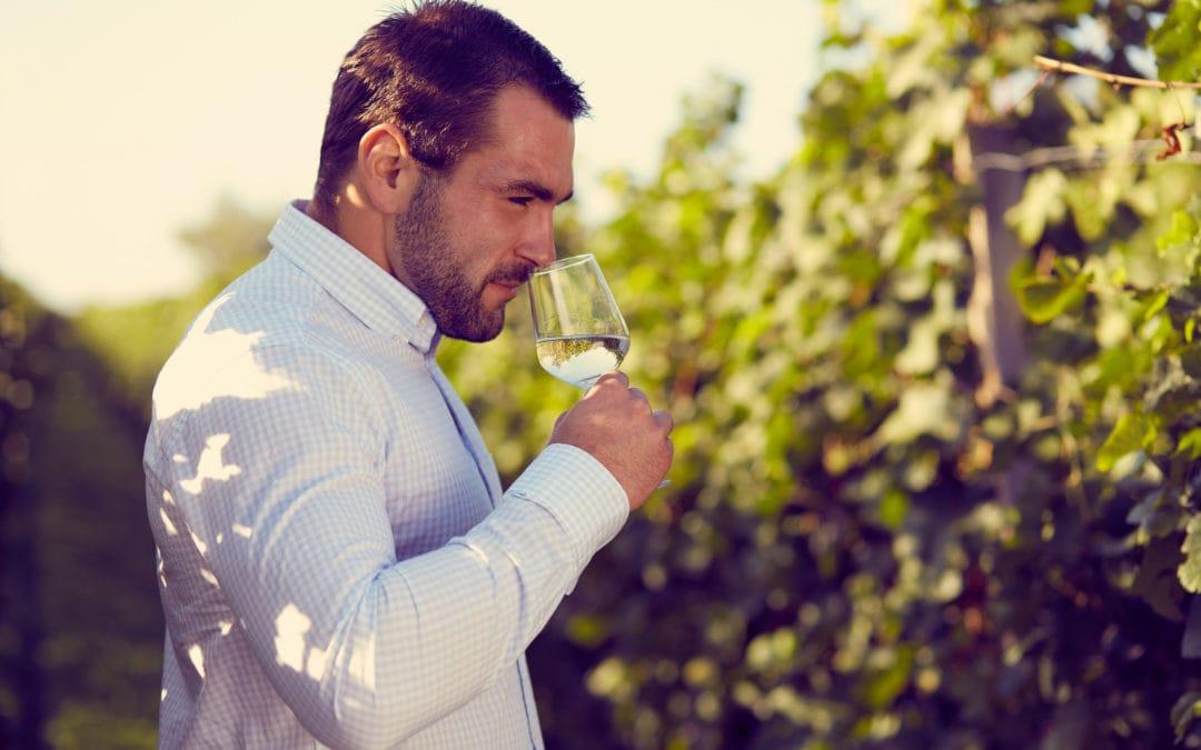 Minerality in Sauvignon Blanc – Part 1