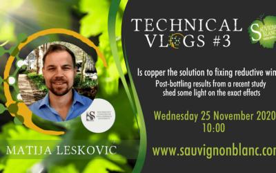 Technical Vlog #3: Matija Lesković